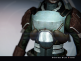 Cuirass of the Witness