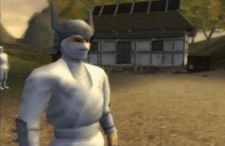 The White Ninja Leader