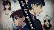 Detective Conan AMV - What have you done