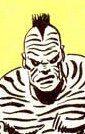 Zebra Man II.jpg