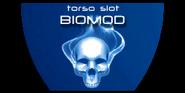 InvisibleWar-CutBiomod-TorsoSlot