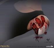 Angela Gunn arm design