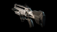Combat rifle DXMD