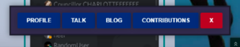 It appears at the bottom of profile pages