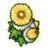 RC Divine Chrysanthemum.png