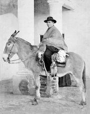 El cura Brochero a lomo de mula.jpg