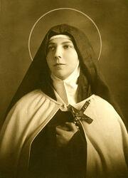 Santa Teresa de los Andes.jpg