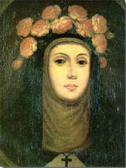 Rosa delima.jpg