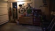 29 Dexter in Andy's garage S4E3