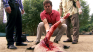 3 Dexter extracts arm