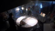 Miguel kills Billy Fleeter as Dexter watches