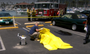 Lundy crime scene 8
