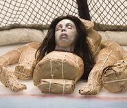 Sheri Taylor, Arena Victim
