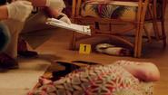 Swan murder weapon 808