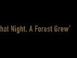 Episode 207: That Night, a Forest Grew
