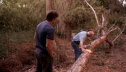 24 Arthur measures tree S4E7