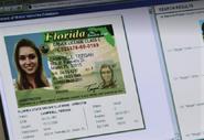 Teegan's license