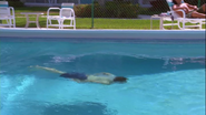 Dexter swims in his pool