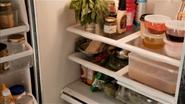 Galuzzo's fridge 803