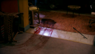 Dex finds blood 511