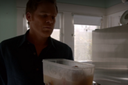 Dexter finds human brain