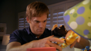 Dex examines lamp 511