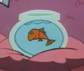 FishyFirst