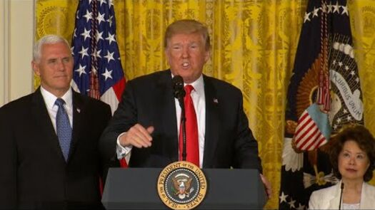 Trump calls on Pentagon to create Space Force