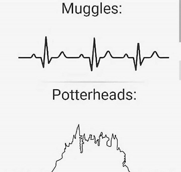 Muggles vs Wizards