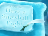 How to Have a Snowball Fight
