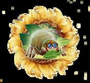 Sunflower Spider