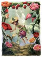 Lily Gardening