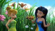 Disney Fairies Short Bee's Eye