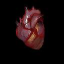 Monk explodingPalm heart