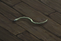 Snake (white) Companion.png