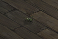 Wasp Companion.png