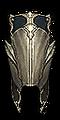 Vizier Hat.png
