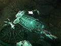 Wraith2.jpg