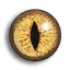 Lizard Eye.png