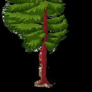 RedwoodTree