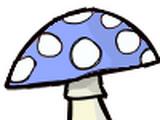 Blewit Mushroom