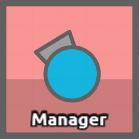 Managerprofile