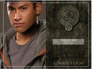 District 10 tribute boy.jpg