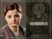 District 10 tribute girl-1.jpg