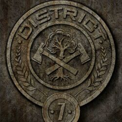District-Posters-the-hunger-games-25837529-500-750.jpg