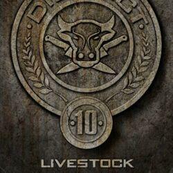 Hunger-games-poster-district-10.jpg