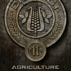 Official-District-11-Seal.jpg