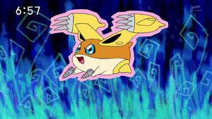DigimonIntroductionCorner-Patamon 3.png