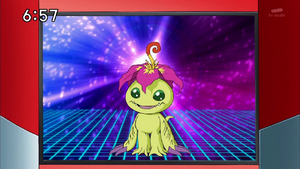 DataCollection-Palmon.png