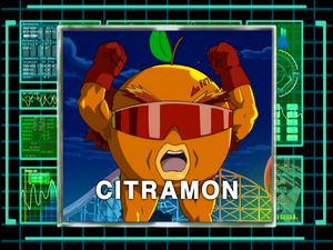 DigiAnalyserDS-Citramon.png